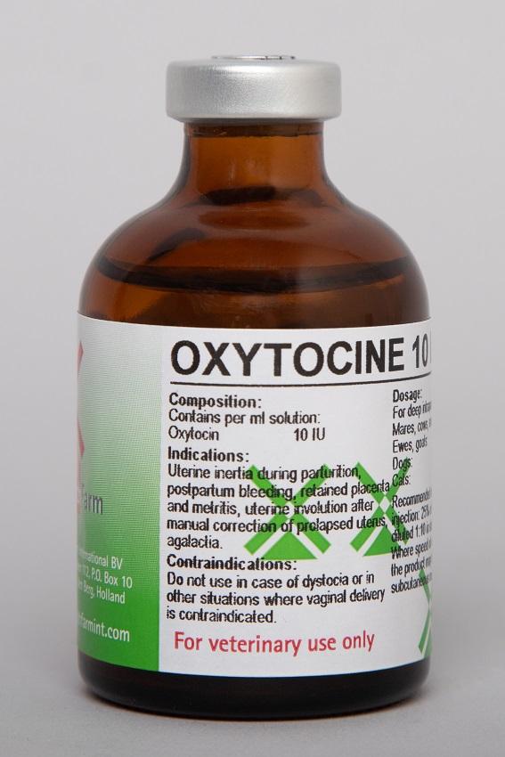 Oxytocine 10 IU/ml Inj