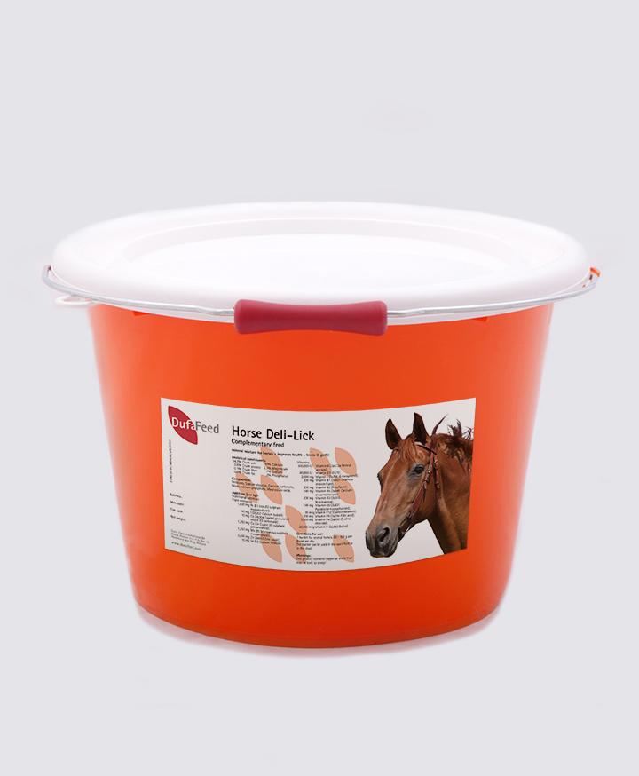Horse Deli-Lick